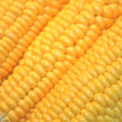 Stock Photo: Yellow corn isolated close-up