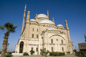 Mohamed Ali Mosque — Stock Photo