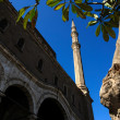 Mohamed Ali Mosque architecture details — Stock Photo