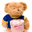 Hand-made toy bear hold a pink gift box — Stock Photo