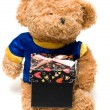 Hand-made toy bear hold a black gift box — Stock Photo