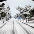 White snow covered the road in city — Stock Photo #2094047