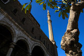 Mohamed Ali Moschee-Architektur-Informationen — Stockfoto