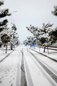 White snow covered the road in city — Stock Photo