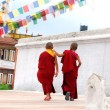 Two TibetChildren Buddhist Monks — Stok Fotoğraf #2427496