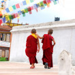 Two Tibetan Children Buddhist Monks - Stock Photo