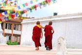 Two Tibetan Children Buddhist Monks — Stock Photo