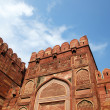 Entrance Gate close-up in Agra fort — Foto de Stock