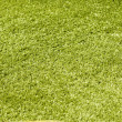 Green grass close-up background — Stock Photo