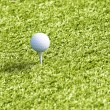 Stock Photo: Golf ball on grass