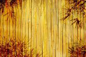 ışık altın bambu arka plan — Stok fotoğraf