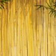 Light golden bamboo Background — Stock Photo #2581236