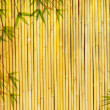 Light golden bamboo Background — Stock Photo #2601763