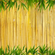 Light golden bamboo Background - Stock Photo