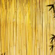 Light golden bamboo Background — Stock Photo #2610453