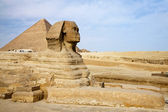Egyptian Sphinx with pyramid in Giza — Stock Photo