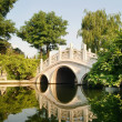 White curved bridge in parks — Stock Photo #2401817