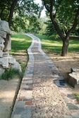 Stone walkway winding in garden — Stock Photo