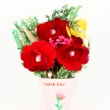 Red flowers in a pot with text — Stock Photo #2139974