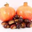 Two pomegranates and chestnuts — Stock Photo