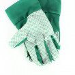 Royalty-Free Stock Photo: Garden gloves