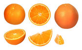 Collection of oranges — Foto de Stock
