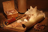 Seashells and old map — Foto de Stock