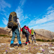 Hikers — Stock Photo #2048683