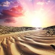 Stock Photo: Desert on sunset