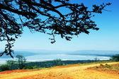 非洲风景 — 图库照片