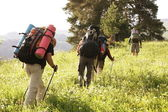 In hike — Stock Photo