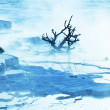 Stock Photo: Mammoth Hot Spring