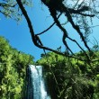 Tropical waterfalls — Stock Photo