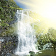 Waterfall — Stock Photo #2118113