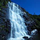 Cascada — Foto de Stock