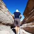Hike in canyon — Stock Photo #2362411