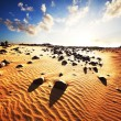 Desert — Stock Photo #2402405