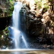 Waterfall — Stock Photo #2402553