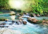 Creek — Stock Photo
