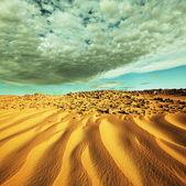 Desierto de la arena — Foto de Stock