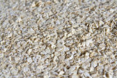 Close-up on white oats surfase — Stock Photo