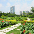 Shanghai city park - Stock Photo