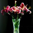 Pink alstroemeria lily flowers in glass vase. — Stock Photo #2315557
