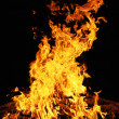 Blazing fire - Stock Photo