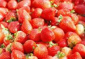 明るい赤いイチゴ — ストック写真