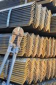 De hoek ijzer- en snijden gebruiksvoorwerp tang. — Stockfoto
