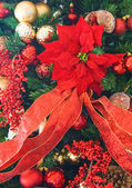 Poinsettia Tree — Stock Photo