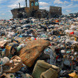 The bulldozer on a garbage dump - Stock Photo