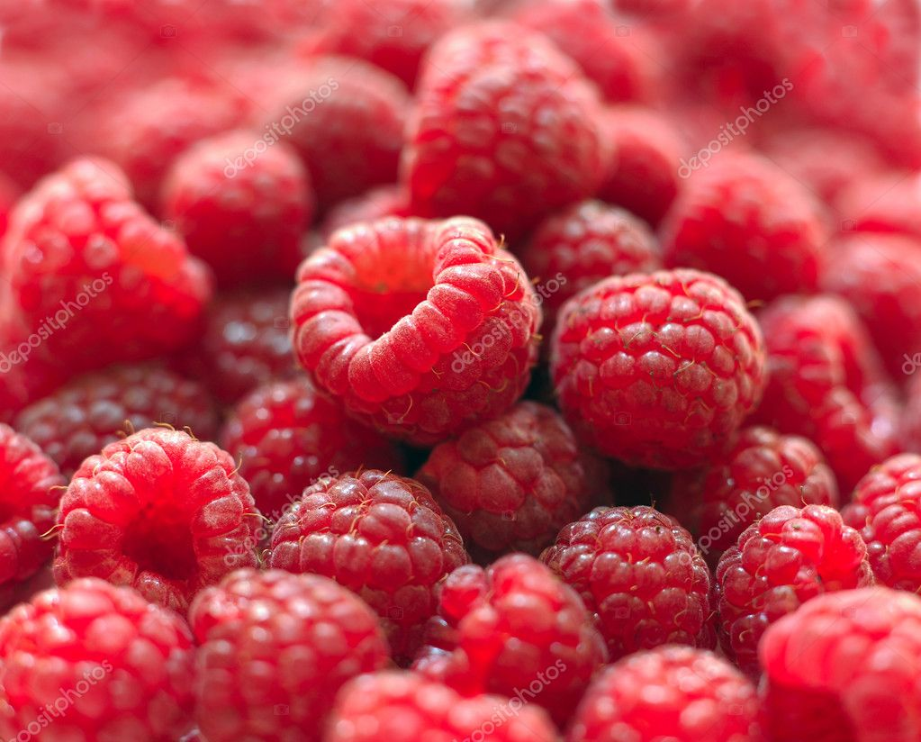 Berries of a ripe raspberry in a considerable quantity — Stock Photo #2086093