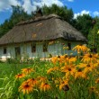 Ukrainian hut with a straw roof — Foto de Stock